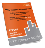 why most businesses fail ebook